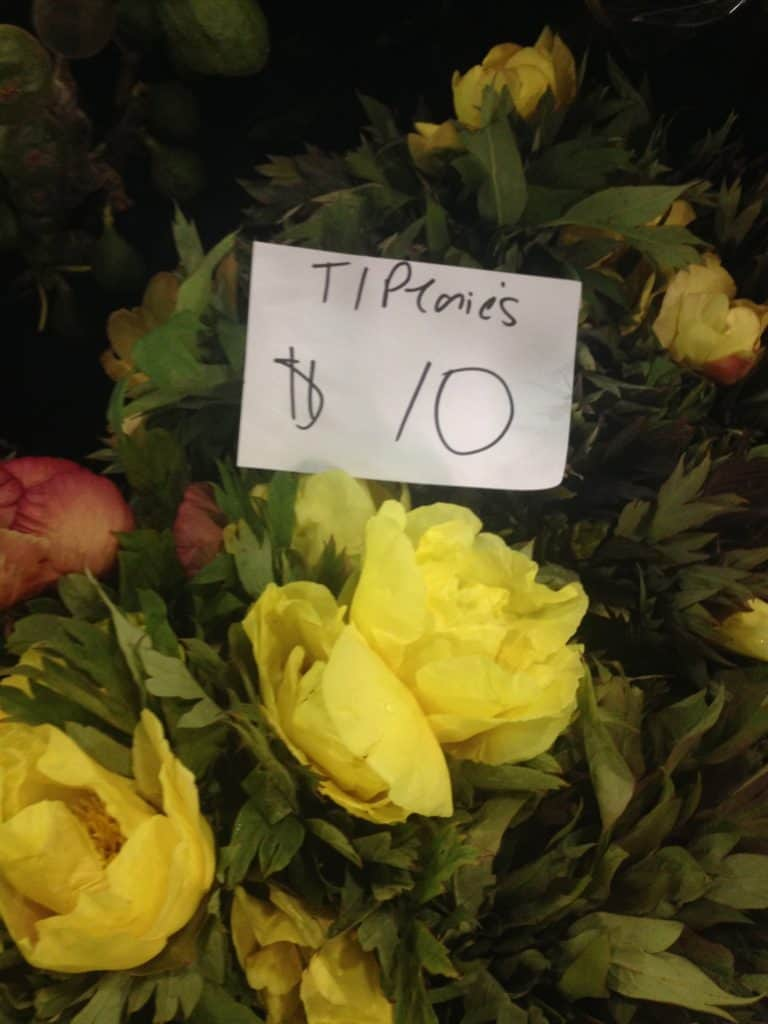 Sydney Flower Markets The Making Your Grandmother A Birthday