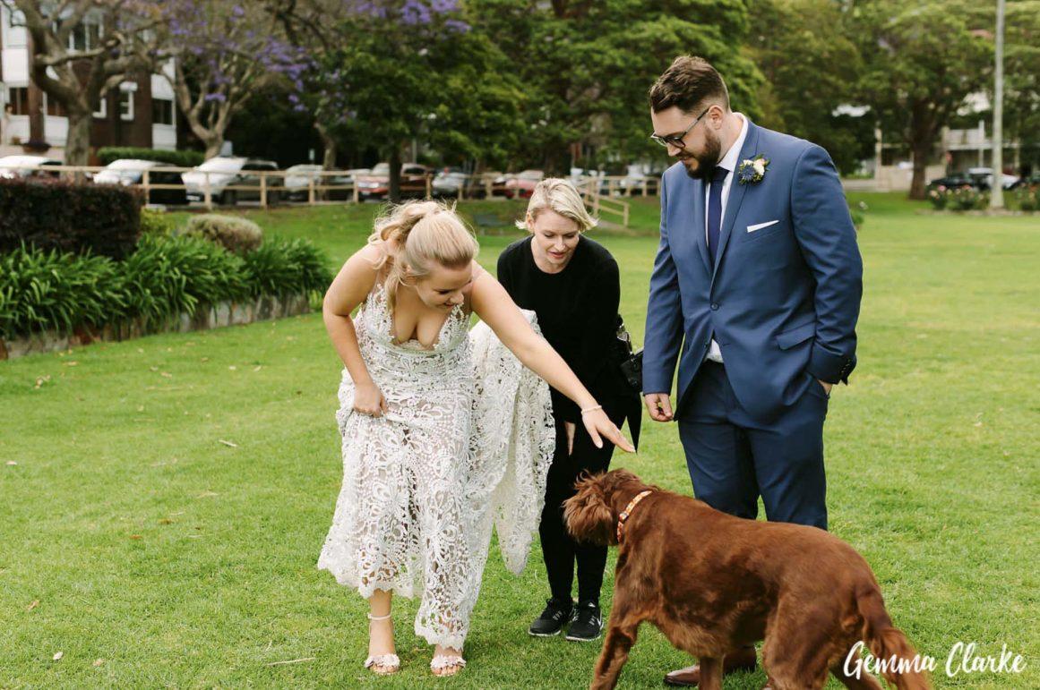 sydney-wedding-reception-packages-flying-squadron-kirribillii-puppy-dog